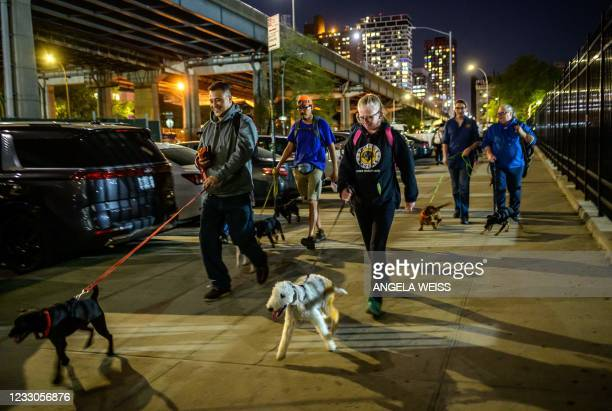 Members of 'The Ryder's Alley Trencher-fed Society ' meet with their dogs to vermin control a neighborhood in lower Manhattan on May 14, 2021 in New...