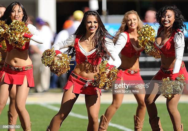 Members of the San Francisco 49ers Gold Rush cheerleaders perform before the start of a regular season NFL game between the St Louis Rams and the San...