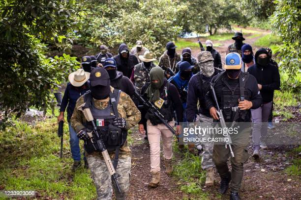 Members of the self-defense group Pueblos Unidos carry out guard duties in protection of avocado plantations, whipped by drug cartels that dominate...
