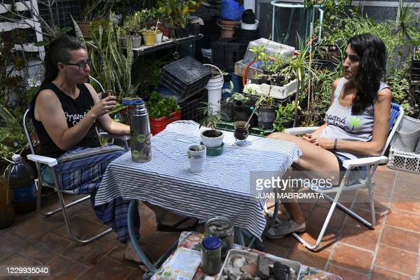 Members of the self-managing NGO Mama cultiva Valeria Rivera and Valeria Salech chat after preparing medicinal oil with self-cultivated cannabis for...