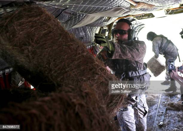 Members of the Texas Army National Guard prepare to drop bales of hay from the back of a CH74 Chinook helicopter to stranded cows on September 5 2017...