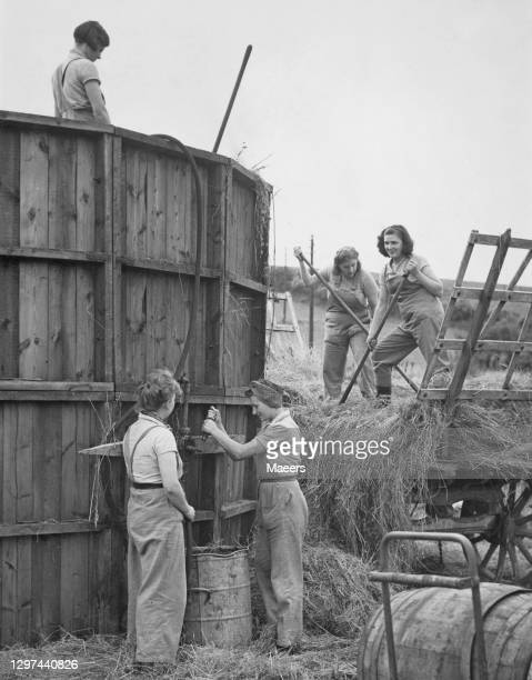 Members of the Women's Land Army at work filling a silage silo with fodder for cattle feed on 29th July 1940 on farmland at Usk in Monmouthshire,...