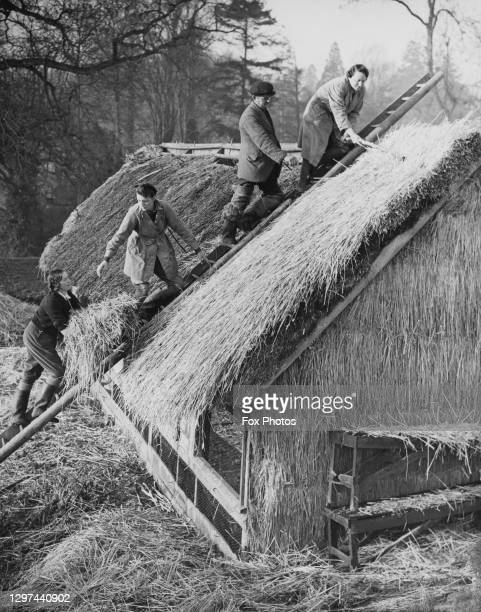 Members of the Women's Land Army being instructed in the art of thatching a roof circa March 1941 at Chadacre Hall Estate near Bury St Edmunds in...