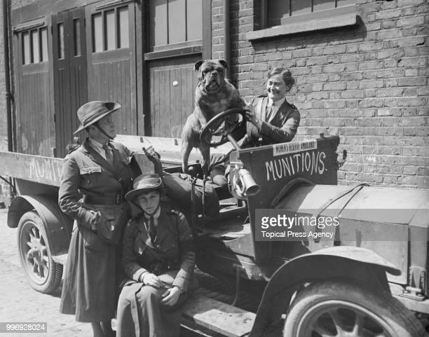 Members of the Women's Reserve Ambulance with their vehicle and their bulldog mascot, June 1916.
