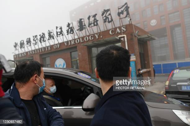 Members of the World Health Organization team investigating the origins of the COVID-19 coronavirus arrive by car at the Wuhan Institute of Virology...