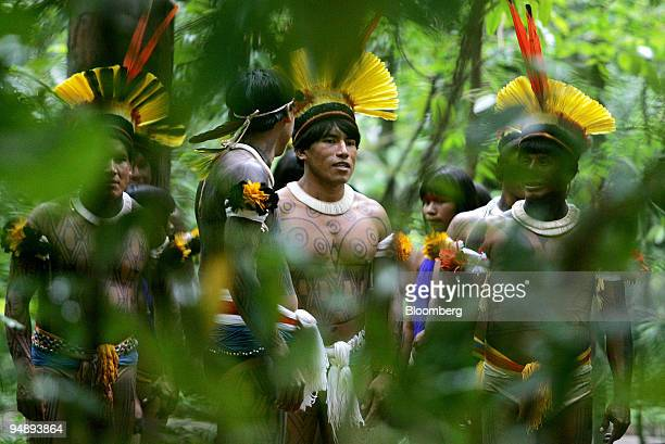 Members of the Xingu Indian tribe dance during a ritual in the Amazon forest of Brazil on March 28 2006 Lawmakers are debating a bill to allow...