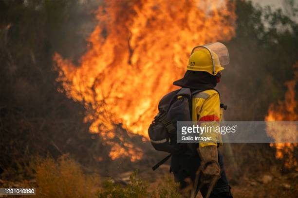 Members of Working on Fire battle to stop a wildfire from spreading to Barrydale on February 04, 2021 in the Overberg District, South Africa. It is...