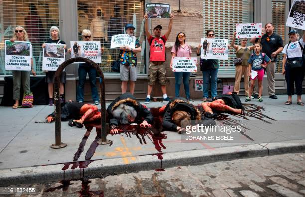 Members protest the use of coyote fur by clothing company Canada Goose outside their store in New York City on August 15, 2019.