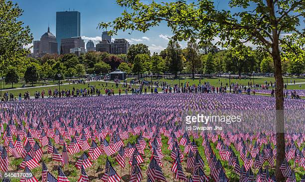memorial day,  boston - boston common stock pictures, royalty-free photos & images