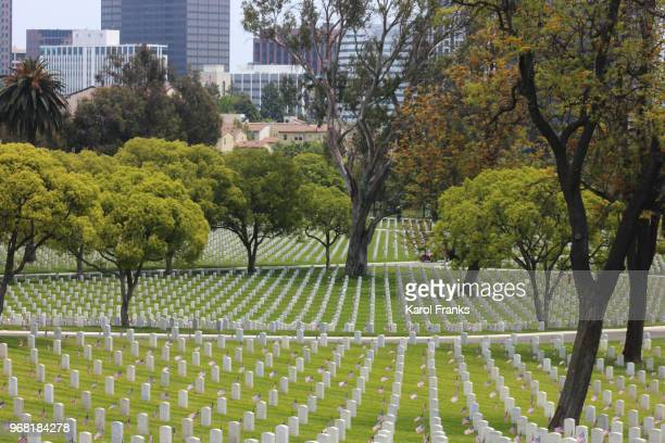memorial day cemetery - rest in peace stock pictures, royalty-free photos & images