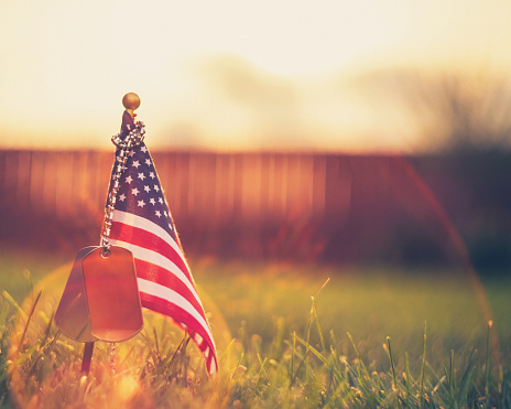 Memorial Day flag and dog tags in evening sunshine 954310704