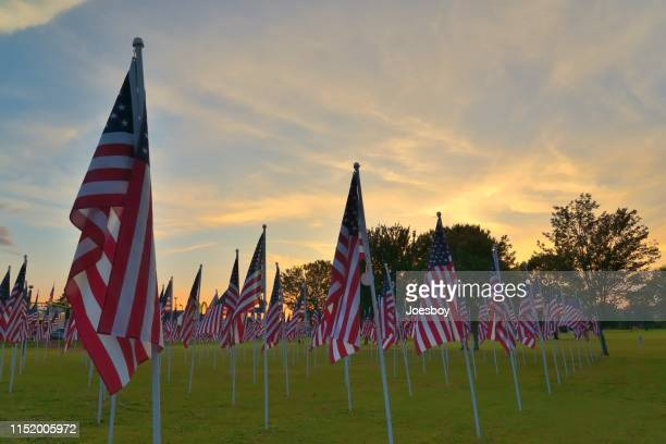 memorial day flag array - memorial day background stock pictures, royalty-free photos & images