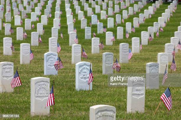 memorial day flags and headstones - rest in peace stock pictures, royalty-free photos & images