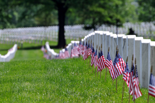 Memorial Day flags at cemetery 104684790