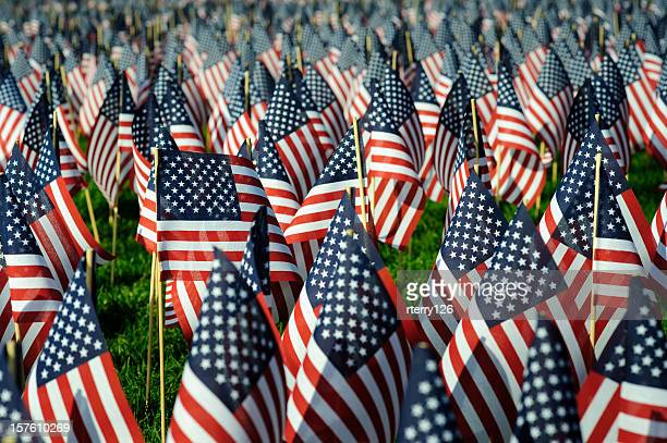 memorial day flags - memorial day remembrance stock pictures, royalty-free photos & images