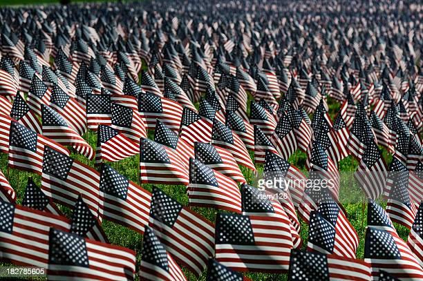 国旗記念日 - 米退役軍人の日 ストックフォトと画像