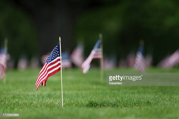 Memorial Day grave site flags.