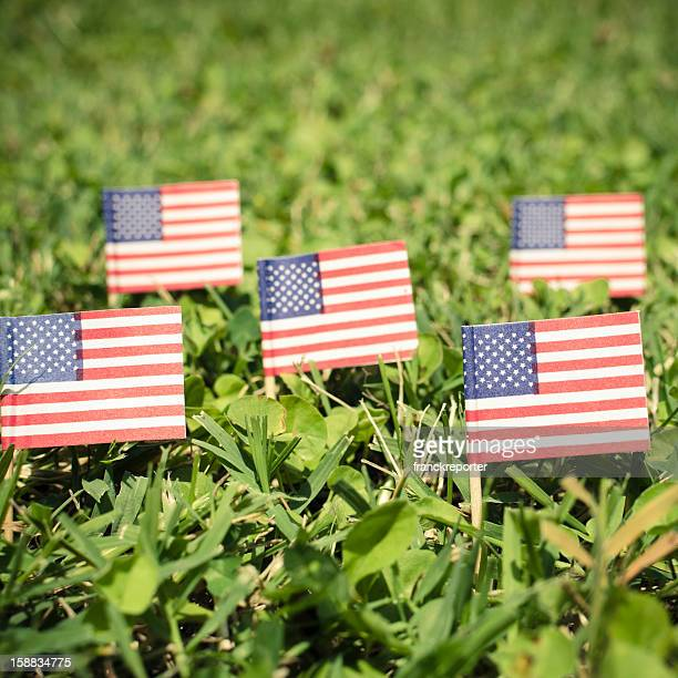 memorial day holiday - flag day stock pictures, royalty-free photos & images