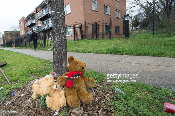 A memorial in the 800 block of Chesapeake SE for Aubrey Dansbury is soggy from the recent rain on March 25 2016 in WashingtonDC Dansbury was shot on...