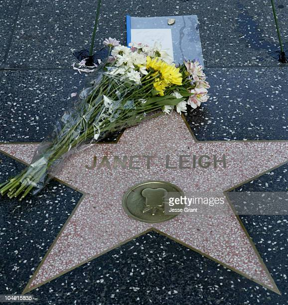 Memorial to Janet Leigh at her star on the Hollywood Walk of Fame