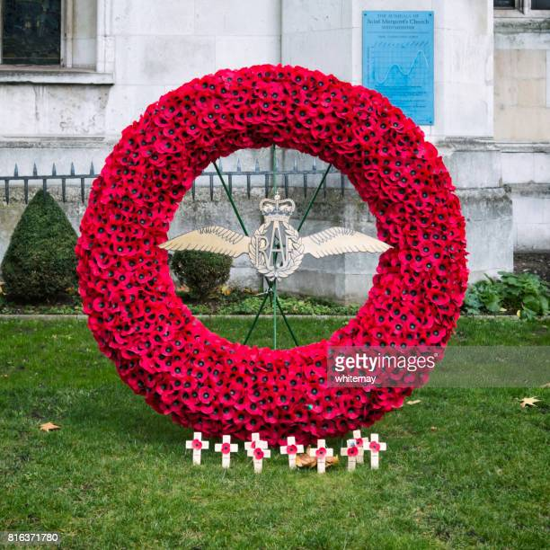 raf memorial wreath at westminster, london - remembrance sunday stock pictures, royalty-free photos & images