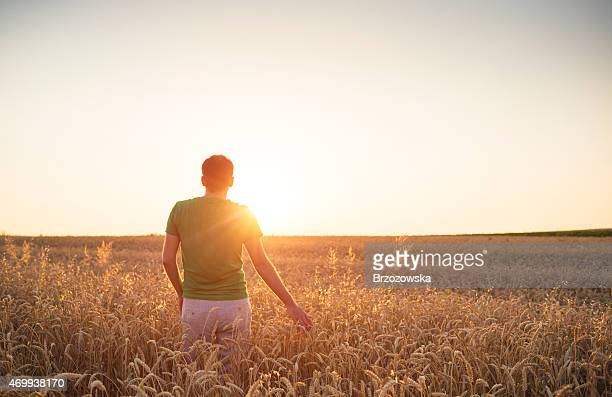 Men admiring the sunset among fields of wheat