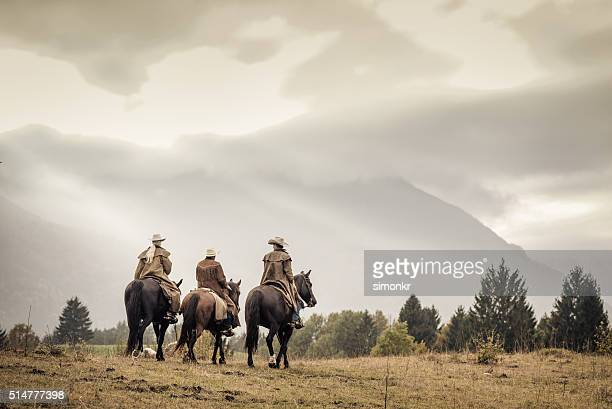 men and woman enjoying horse riding - three animals stock pictures, royalty-free photos & images