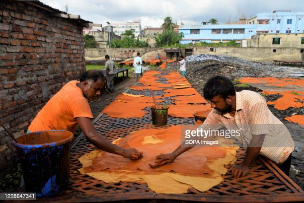Men are seen working at a tannery in Hazaribagh, Dhaka. Most people in this area have become victims of pollution due to the presence of toxic...