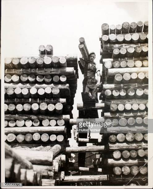 Men at work stacking 1 000 pit props for mines in Preston Dockyard, Lancashire, 10th July 1936. Preston Docks has been chosen as the centre for the...