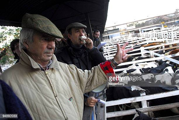 Men bid for cattle at the Liniers Livestock Market in Mataderos a suburb of Buenos Aires Argentina on Wednesday May 16 2007 Agricultural economics...