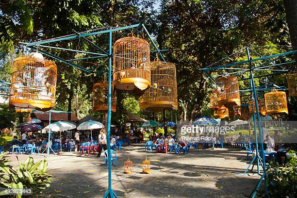 CONTENT] Men bring their caged songbirds to the park in Ho Chi Minh City to display them to their friends and others