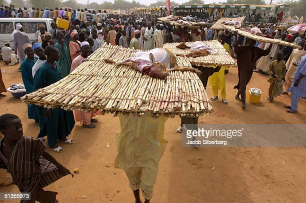 Men carry the bodies of skinned goats away from the goat skinning competition at the Argungu Fishing Festival on March 18 2004 in Argungu Nigeria The...