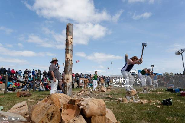 Men compete in a wood chopping competition at the 2017 Deni Ute Muster on September 30 2017 in Deniliquin Australia The annual Deniliquin Ute Muster...