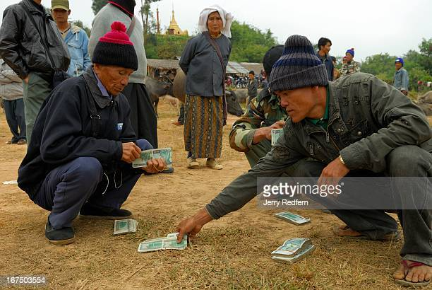Men count the money to be paid for a water buffalo in the weekly water buffalo market in Kengtung