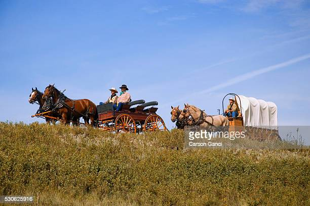 Men Driving Horse-drawn Wagons