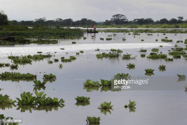Men fish in an overflowed river following heavy rains in Community Malacatoya, Granada, some 65 km from Managua, on October 9, 2018. - Up to now four...