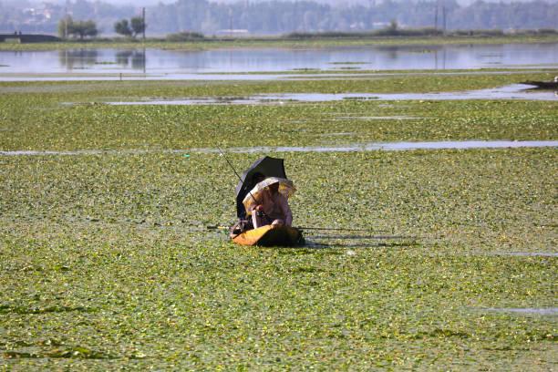 IND: Fishing In Dal Lake