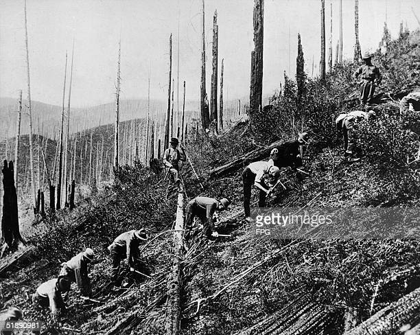 Men from the Reforestation Army, part of the Civilian Conservation Corps created by President Roosevelt's New Deal programs, clear brush from a...