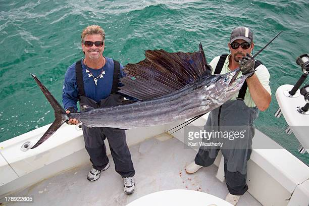men holding sailfish - sailfish stock pictures, royalty-free photos & images