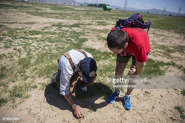 Men inspect newly planted grass during a cricket nets session at MACA Mongolian Friendship Cricket Ground on July 16 2016 in Ulaanbaatar Mongolia...