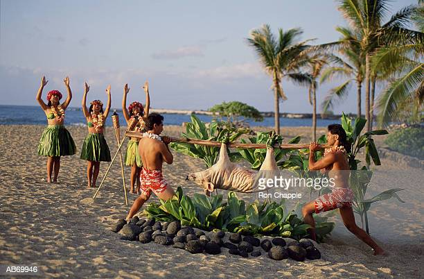 men lowering pig onto fire pit, hula dancers in background - povo havaiano imagens e fotografias de stock