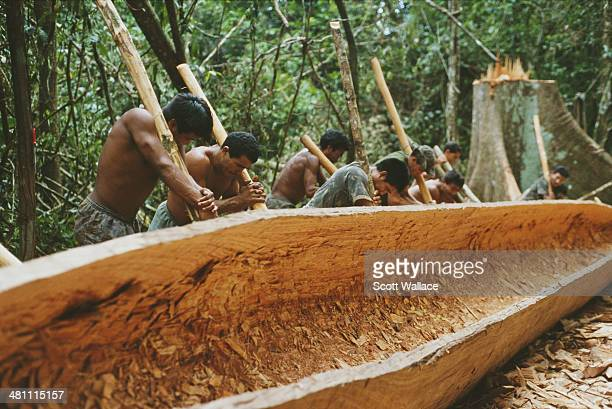 Men making a dugout canoe during an expedition led by Brazilian explorer social activist and ethnographer Sydney Possuelo in the Amazon rainforest of...