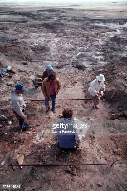 men mapping fossil dig site - men stockfoto's en -beelden