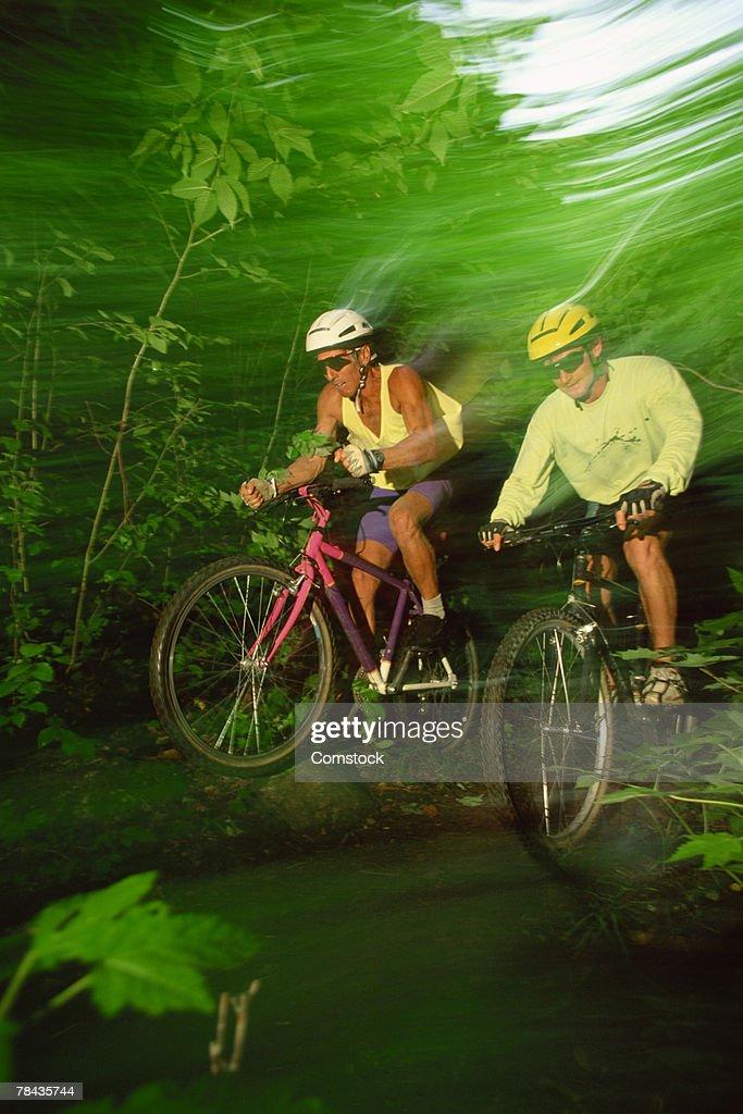 Men mountain biking through forest trail , Mt. Tremblant , Quebec , Canada : Stockfoto