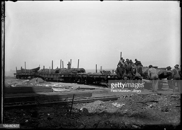 Men moving totem poles off of train's flatbed railroad cars Field Columbian Museum move to new Field Museum move series Chicago Illinois 1920