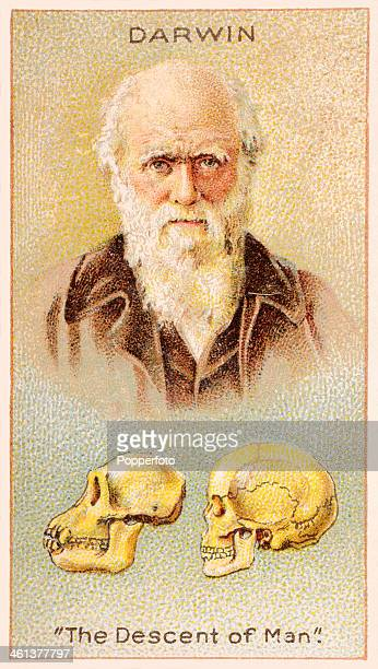 A Men of Genius Shelley cigarette card featuring illustrations of the English naturalist Charles Darwin and skulls representing his seminal work The...