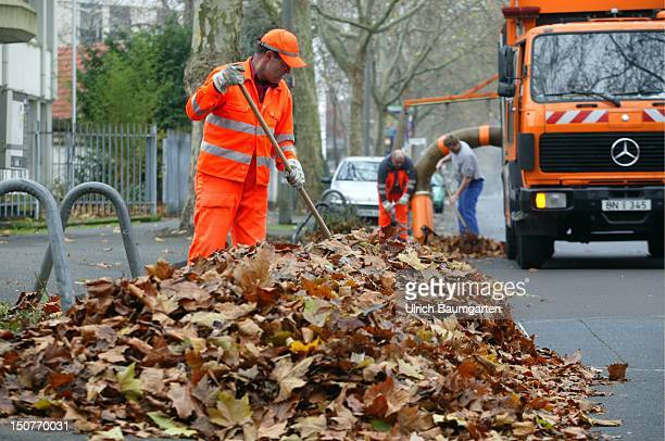 Men of the refuse disposal service are sweeping leaves which is drawed in the dustbin lorry