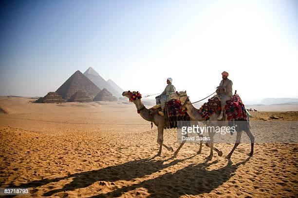 men on camels