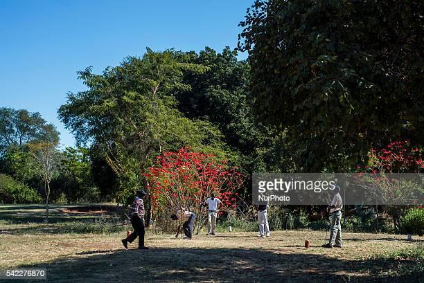the royal livingstone zambia