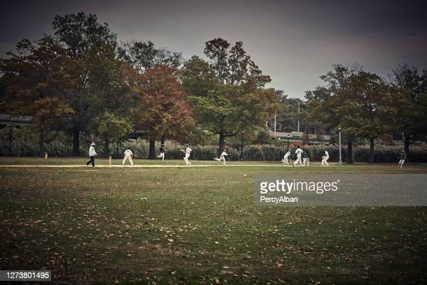 フラッシングクイーンズでクリケットをしている男性 - クリケット競技場 ストックフォトと画像